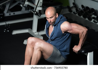 Strong Man In The Gym Exercising Triceps On Bench - Muscular Athletic Bodybuilder Fitness Model Exercise