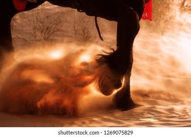 Strong powerful hooves in desert sand