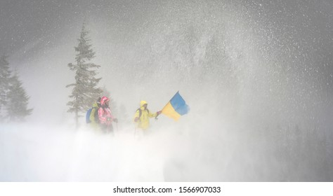 Strong snow blizzard blizzard in the Ukrainian Carpathians did not stop the brave conquerors of climbers of tourists of a high peak in the Gorgan Mountains Khomyak