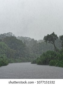 Strong tropical rain over a river that runs through the rainforest - Location: Indonesia, Borneo