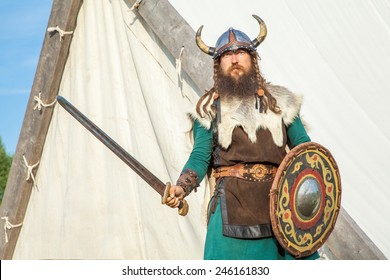 Strong viking is defending near his territory