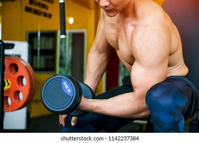 Strong well built bodybuilder asian for lifting dumbbell weights getting ready for exercise in gym gaining weight pumping up muscles and fitness concept