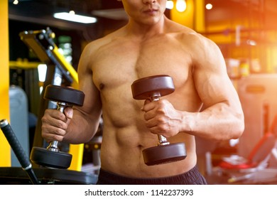Strong well built bodybuilder lifting dumbbell weights getting ready for exercise in fitness