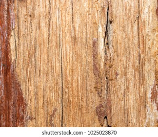 Structure of an old planed board with traces of paint and dirt. Wood with defects. Texture background