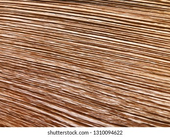 The structure of piece of wood. Shot from close view.