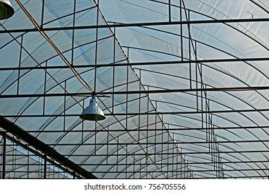 Structure of roof in the garden