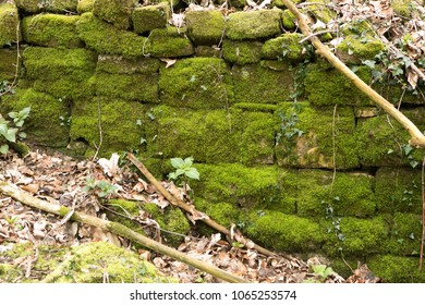 structured stone with moss