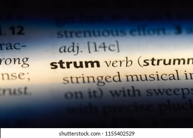 strum word in a dictionary. strum concept.