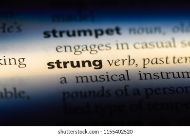 strung word in a dictionary. strung concept.
