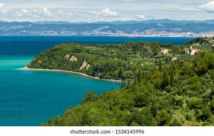 Strunjan bay in coast of Slovenia - Shutterstock ID 1534145996