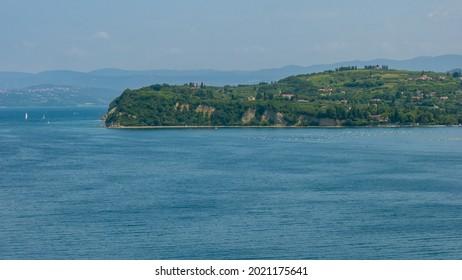 Strunjan cliff on Slovenian Adriatic Coast, Adriatic Sea - Shutterstock ID 2021175641