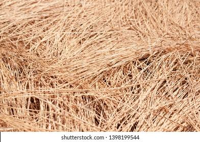 Stubble field, chaff surface texture