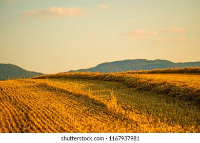 stubble field with straw and panoramic view to the German highlands Swabian Alb