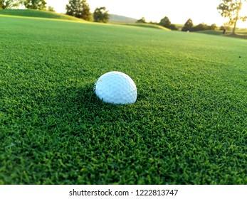 Stuck golf ball on the green
