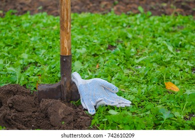 A stucked in the ground shovel and a farmer's working gloves with a green grass behind and a dug up soil in front.