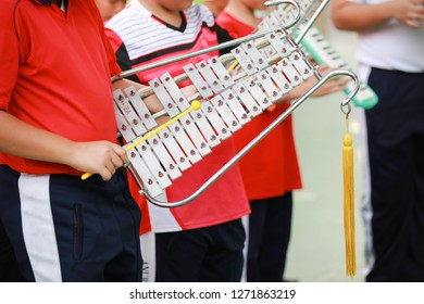 Studen playing Bell-lyra during lead of Palace in school  , Bell lyra in school marching band