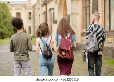Student friends going together to university. Rear view on girls and boys going to classes.