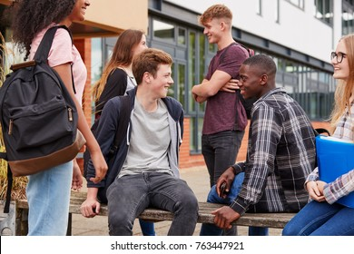 Student Group Socializing Outside College Buildings