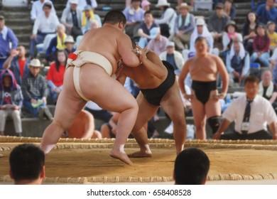 Student sumo wrestler