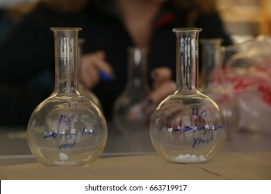 Students carry out science experiment using glass round bottomed flasks.