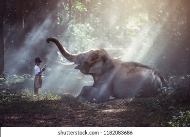 Students in rural Thailand Reading books with elephants,Surin,Thailand.