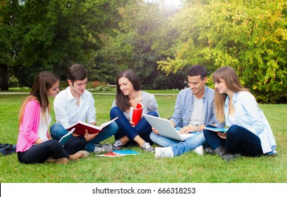 Students studying together in a park