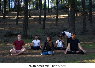 Students in yoga meditation class following teacher instructions in pine trees forest park. Young woman guiding multi ethnic group on mindfulness exercise. Self connection in nature concept