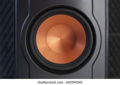 Studio audio equipment. Close-up photo of hi-end speaker