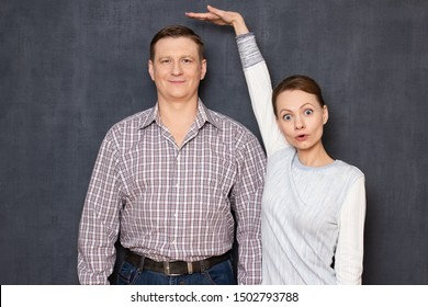 Studio half-length shot of amazed short woman pulling up and showing with hand at height of happy tall man standing beside her and smiling cheerfully, over gray background. Variety of person's heights