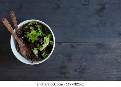 A studio photo of a green leaf salad