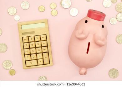 A studio photo of a piggy bank