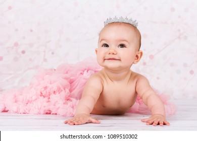 Studio portrait of beautiful crawling baby wearing pink tutu skirt and silver crown