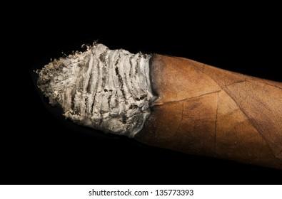 Studio shot cigar black isolated. Smoky cuban cigr.