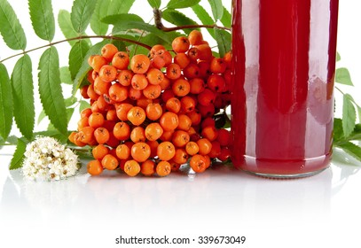 Studio shot of cropped orange rowanberry with blossom, green leaves and jar of juice of rowanberry on white backgroun