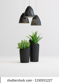 studio shot of lamps and plants in vases on white background