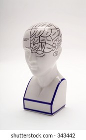 Studio shot of phrenology head