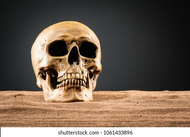 studio shot of a scenic human skull on the desert sand with a dark gray background