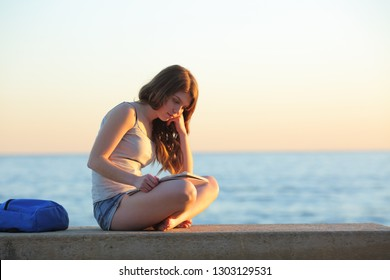 Studious student learning memorizing notes sitting on a bench on the beach