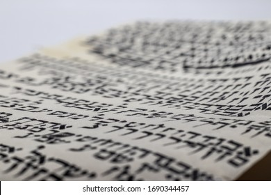 Study of Hebrew writing - style of Torah scroll, (Bible) random letters in Hebrew on leather. (Editor: Letters have no meaning and are completely random)