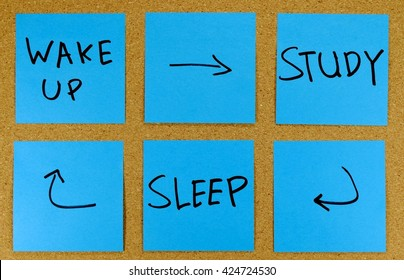 Studying concept- wake up, study, sleep cycle.