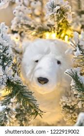 Stuffed animal: icebear