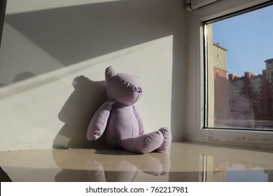 Stuffed animal on a window ledge bathed in afternoon sunshine