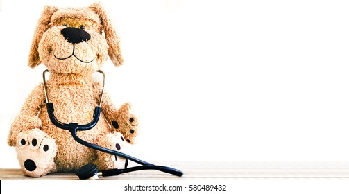 Stuffed Dog animal presented as a pediatrician holding a stethoscope with copy space on white isolated background