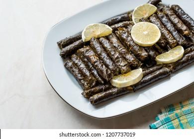 Stuffed Grape leaves with olive oil and Lemon / Zeytinyagli Yaprak Sarma Dolma