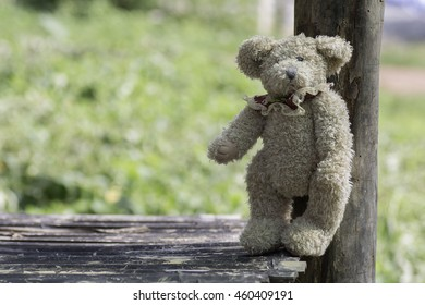 stuffed toy bear standing on bamboo table