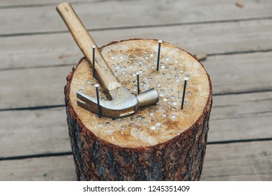 stump with hammered nails and a hammer