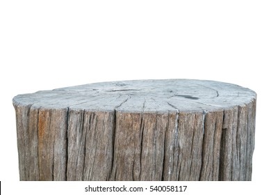 stump isolated with clipping path
