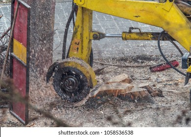 A stump is shredded with a stump cutter. Surrounding shavings are held up by a barrier. Concept: forestry or construction site
