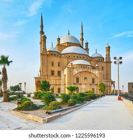 The stunning Alabaster (Muhammad Ali) Mosque of Saladin Citadel is surrounded by beautiful ornamental garden with trimmed coniferous bushes, small pines and tall palm trees, Cairo, Egypt.