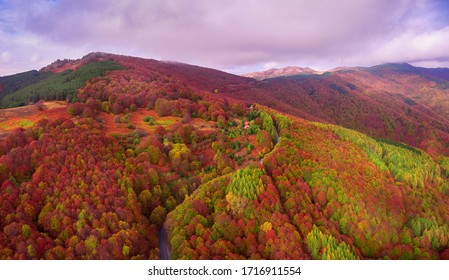 Stunning Autumn Colors over Osogovo mountain. It's drone photography - taken from Ponikva ski resort in Osogovo mountain - Macedonia.